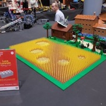 "Bricks in Florence Festival 2018:  Exhibition • <a style=""font-size:0.8em;"" href=""http://www.flickr.com/photos/136365631@N07/44086532570/"" target=""_blank"">View on Flickr</a>"